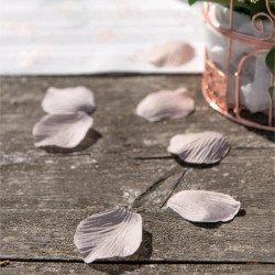 Pétales avec feuilles blanc
