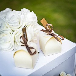 10 boîtes à dragées blanches