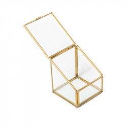 Terrarium en verre et aux bordures dorées